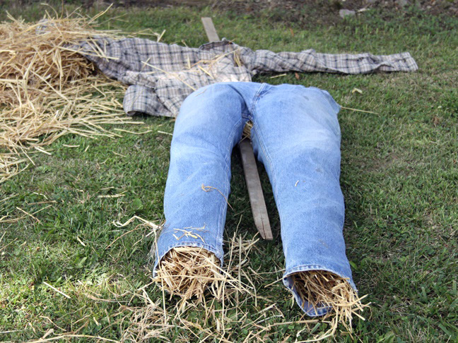 stuffing the homemade scarecrow