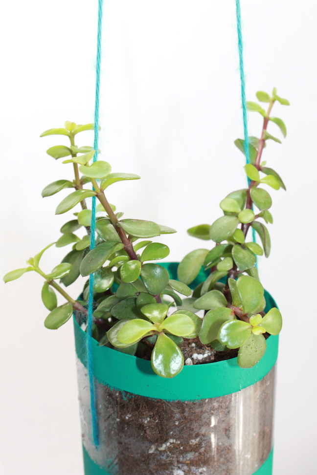 DIY Hanging Recycled Water Bottle Planter Project – momtastic.com