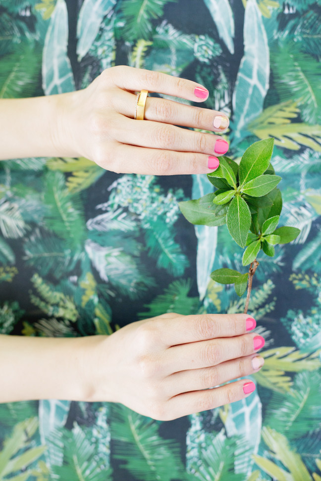 two-tone-mani-two-hands-holding-leaves