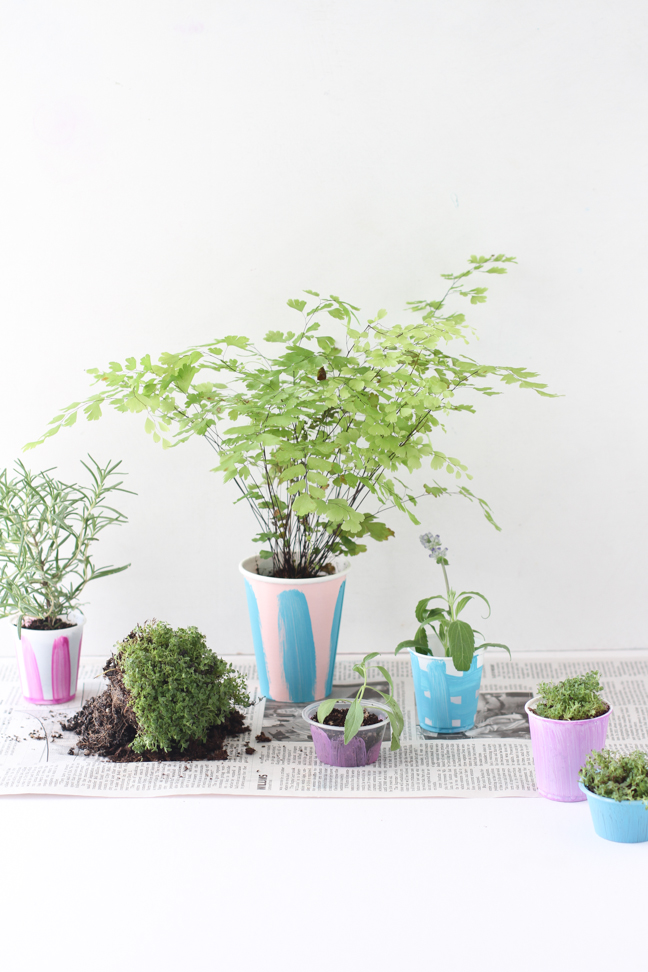 Make DIY starter pots with paper and plastic cups