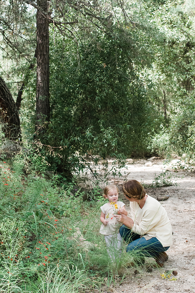foraging for leaves on a nature walk with kids