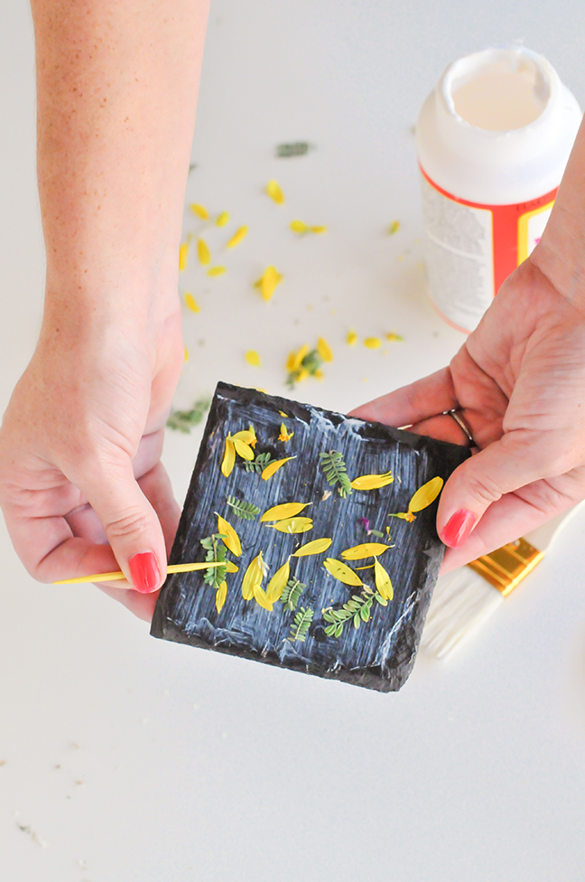 placing foraged leaves and petals in glue on coasters