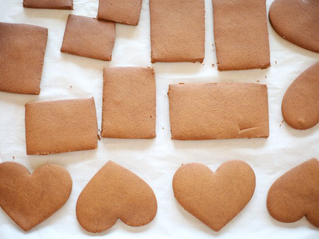 Gingerbread cookie pieces