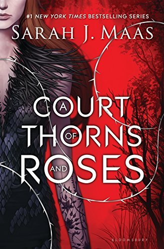 Tingle Books You Should Read to Get You in the Mood This Valentine's Day by @letmestart for @itsMomtastic featuring A COURT OF THORNS AND ROSES